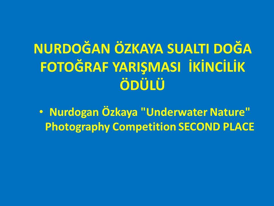 JALE İNAN SUALTI ARKEOLOJİ FOTOĞRAF YARIŞMASI Jale Inan Underwater Archeology Photography Competition
