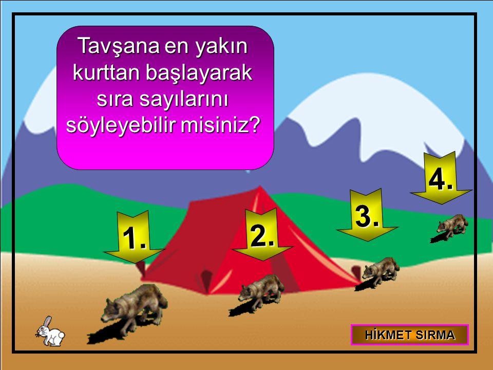 Tavşana en yakın kurttan başlayarak sıra sayılarını söyleyebilir misiniz? 1. 2. 3. 4. HİKMET SIRMA