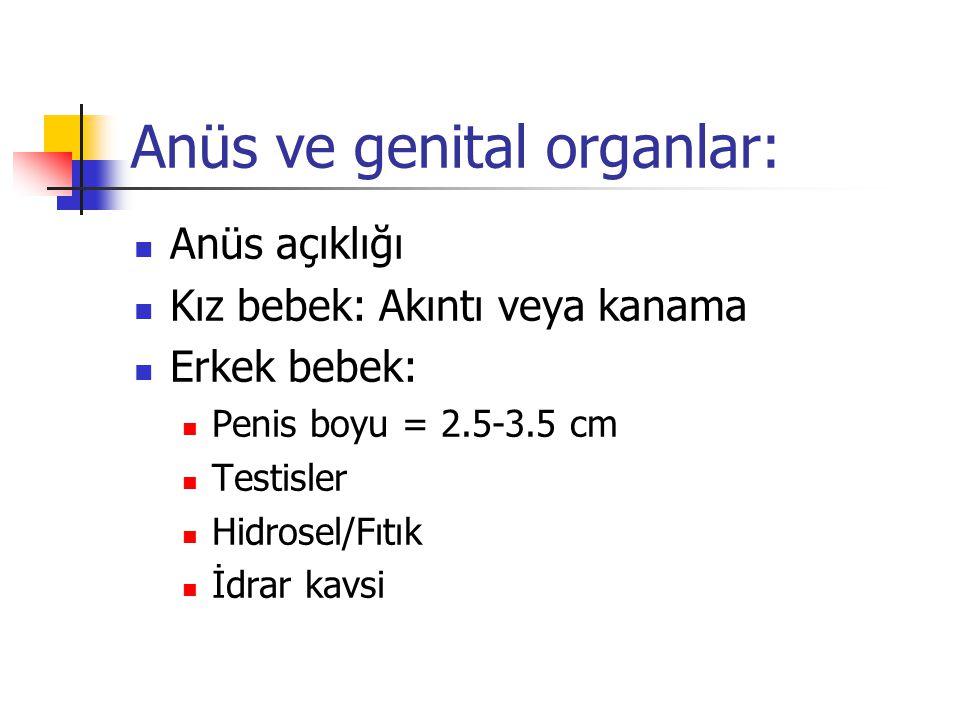 Anüs ve genital organlar: Anüs açıklığı Kız bebek: Akıntı veya kanama Erkek bebek: Penis boyu = 2.5-3.5 cm Testisler Hidrosel/Fıtık İdrar kavsi