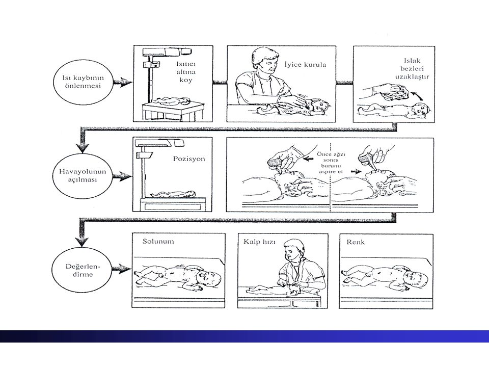 Yenidoğanların ısı kontrolü Yenidoğan bebek homeotermiktir yani ısı kaybı ve üretimi dengelenmiştir Çevre ısısının aşırı yüksek/düşük olması durumunda bu denge bozulur Termoregulasyon ? Isı yapımı ve ısı kaybı arasında denge sağlanmasıdır
