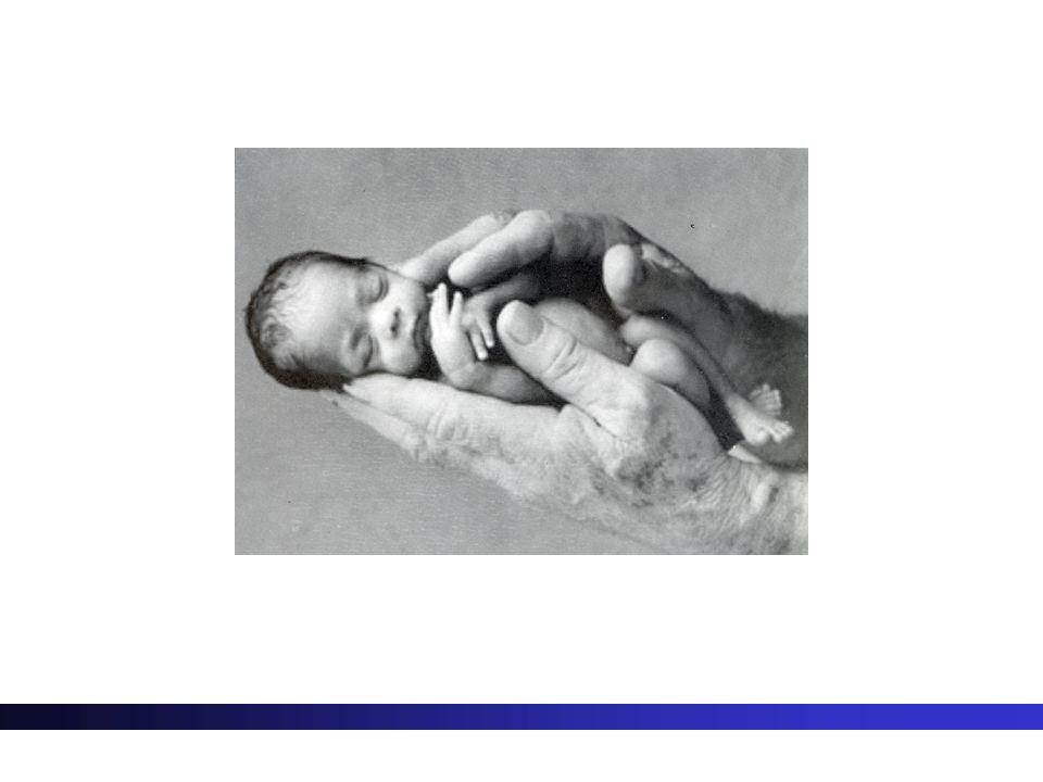 Bebeğin hayati belirtilerini değerlendirme ve ölçülerini alma - Solunum ve dolaşım fonksiyonlarının değerlendirilir : - Vücut ısısı kontrol edilir: solunum sayısı:35-45 /dak REM uykusu sırasında solunum düzensizdir ve 3,5sn solunum durması olabilir.