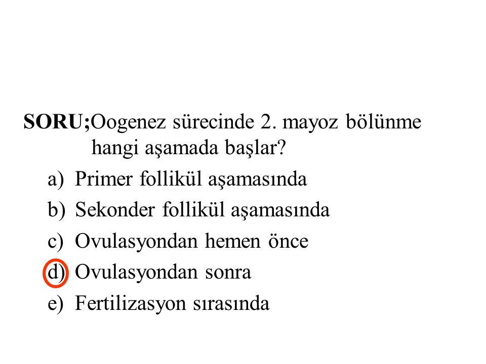 SORU;Oogenez sürecinde 2. mayoz bölünme hangi aşamada başlar? a)Primer follikül aşamasında b)Sekonder follikül aşamasında c)Ovulasyondan hemen önce d)