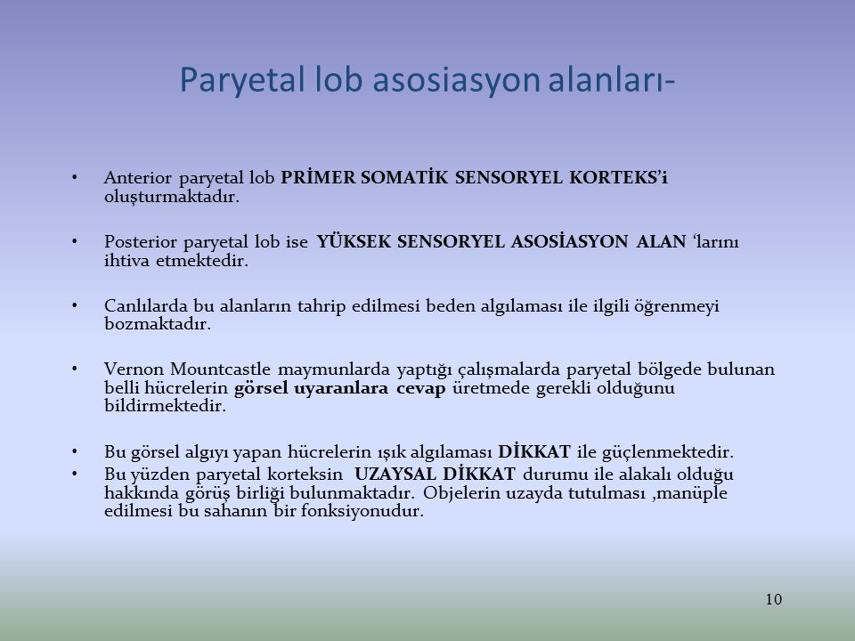 Paryetal lob asosiasyon alanları- Anterior paryetal lob PRİMER SOMATİK SENSORYEL KORTEKS'i oluşturmaktadır. Posterior paryetal lob ise YÜKSEK SENSORYE