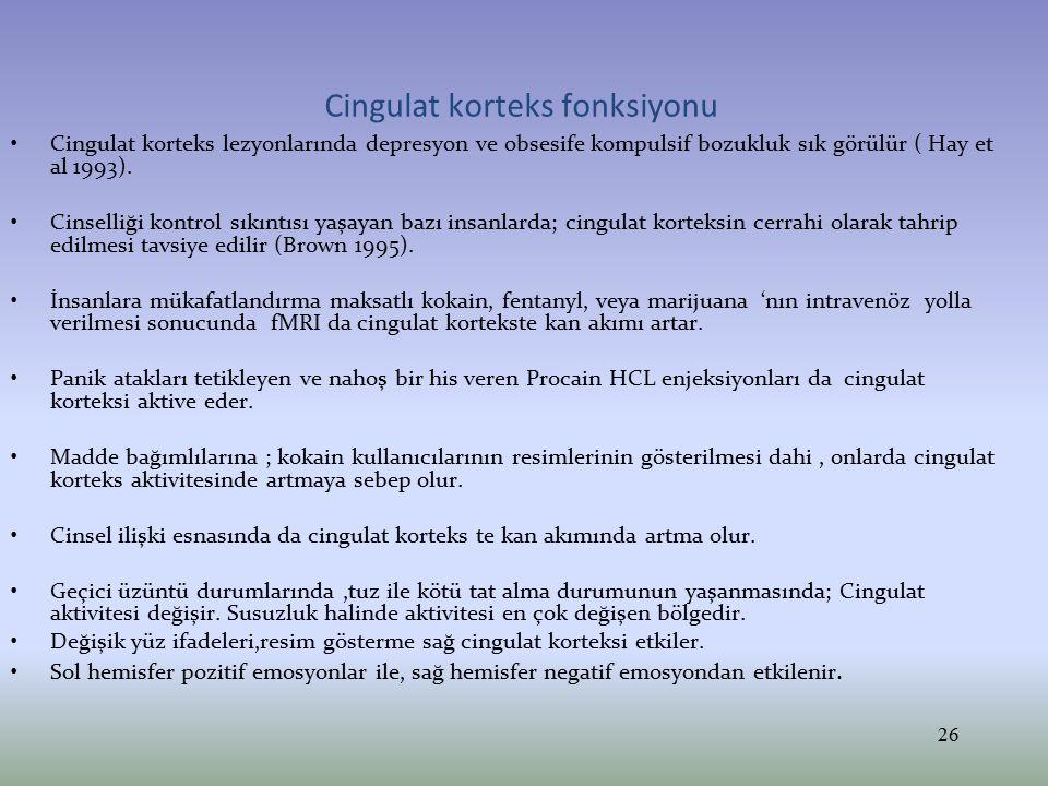 Cingulat korteks fonksiyonu Cingulat korteks lezyonlarında depresyon ve obsesife kompulsif bozukluk sık görülür ( Hay et al 1993). Cinselliği kontrol