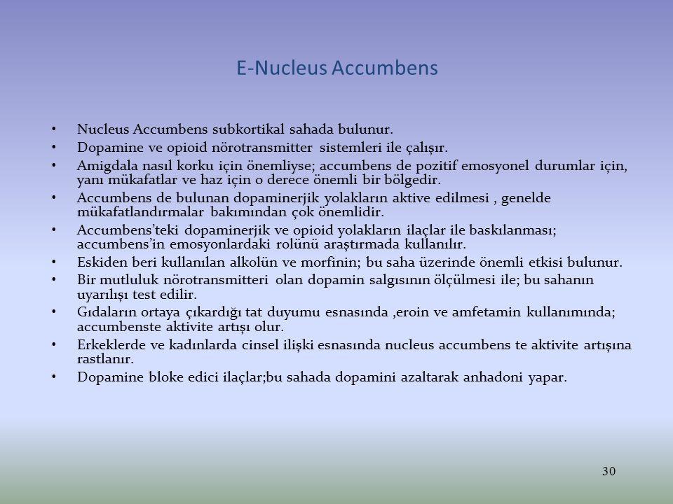 E-Nucleus Accumbens Nucleus Accumbens subkortikal sahada bulunur. Dopamine ve opioid nörotransmitter sistemleri ile çalışır. Amigdala nasıl korku için