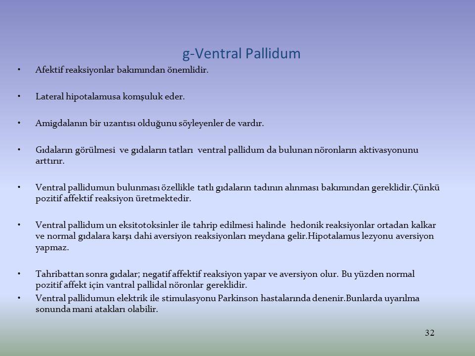 g-Ventral Pallidum Afektif reaksiyonlar bakımından önemlidir. Lateral hipotalamusa komşuluk eder. Amigdalanın bir uzantısı olduğunu söyleyenler de var