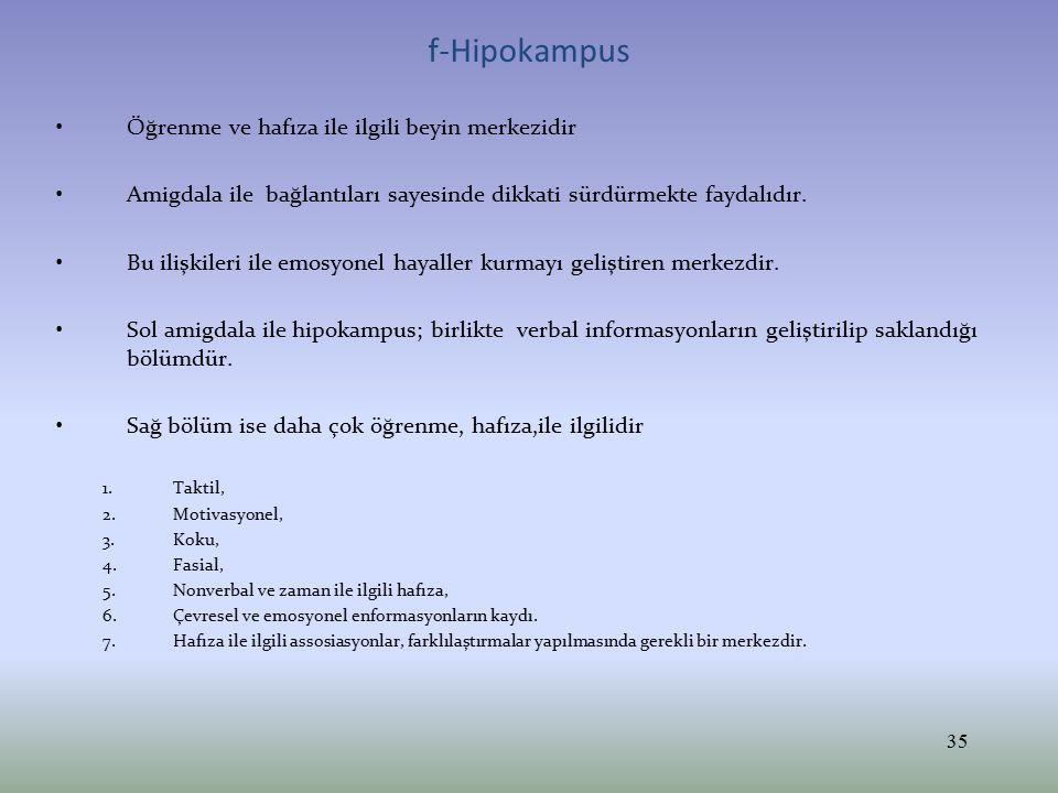 f-Hipokampus Öğrenme ve hafıza ile ilgili beyin merkezidir Amigdala ile bağlantıları sayesinde dikkati sürdürmekte faydalıdır. Bu ilişkileri ile emosy