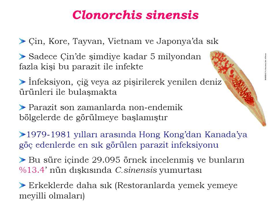 1979-1981 yılları arasında Hong Kong'dan Kanada'ya göç edenlerde en sık görülen parazit infeksiyonu Bu süre içinde 29.095 örnek incelenmiş ve bunların %13.4' nün dışkısında C.sinensis yumurtası Erkeklerde daha sık (Restoranlarda yemek yemeye meyilli olmaları) Clonorchis sinensis Çin, Kore, Tayvan, Vietnam ve Japonya'da sık Sadece Çin'de şimdiye kadar 5 milyondan fazla kişi bu parazit ile infekte İnfeksiyon, çiğ veya az pişirilerek yenilen deniz ürünleri ile bulaşmakta Parazit son zamanlarda non-endemik bölgelerde de görülmeye başlamıştır