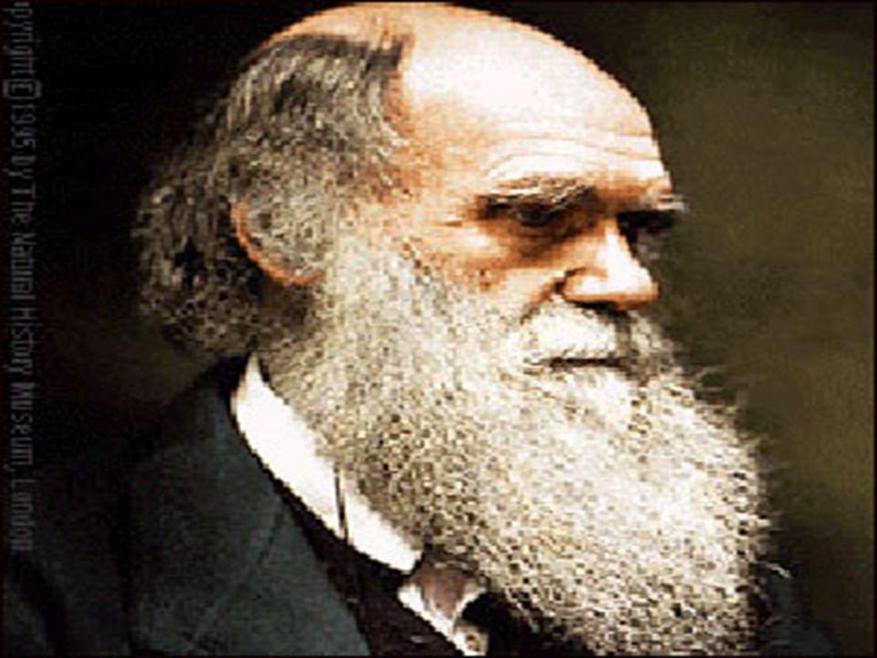 D A R W İN ' in E V R İ M G Ö R Ü Ş Ü Darwin bütün canlıların uzun zaman sürecinde ortak bir kökenden evrim yoluyla ortaya çıktığını savunur Darwin görüşünü adaptasyon ve doğal Seleksiyon la açıklar.