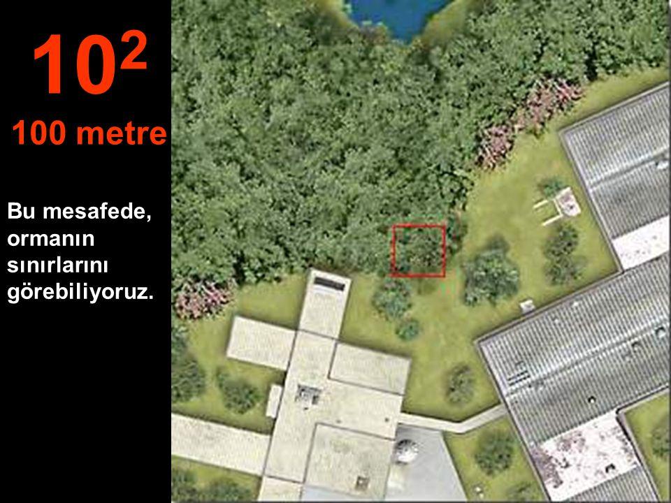 Bu mesafede, ormanın sınırlarını görebiliyoruz. 10 2 100 metre