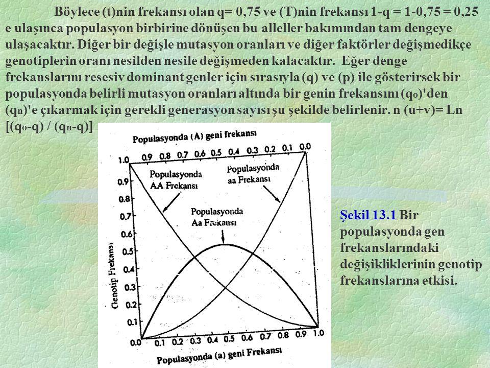 Şekil 13.1 Bir populasyonda gen frekanslarındaki değişikliklerinin genotip frekanslarına etkisi. Böylece (t)nin frekansı olan q= 0,75 ve (T)nin frekan