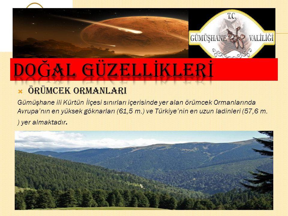  Z İ GANA DA Ğ I Gümüşhane -Trabzon yolunun 50. km.'sinde bulunan Zigana tünelini geçtikten sonra doğaya 3,5 km stabilize yolla ulaşılan Zigana Turiz