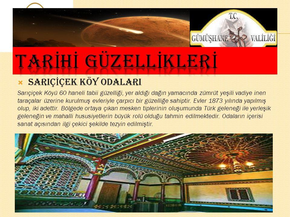  ÖRÜMCEK ORMANLARI Gümüşhane ili Kürtün İlçesi sınırları içerisinde yer alan örümcek Ormanlarında Avrupa'nın en yüksek göknarları (61,5 m.) ve Türkiy