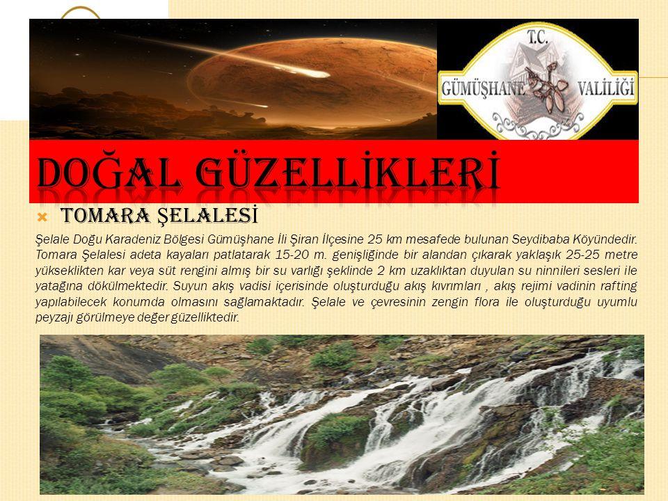  TOMARA Ş ELALES İ Şelale Doğu Karadeniz Bölgesi Gümüşhane İli Şiran İlçesine 25 km mesafede bulunan Seydibaba Köyündedir.