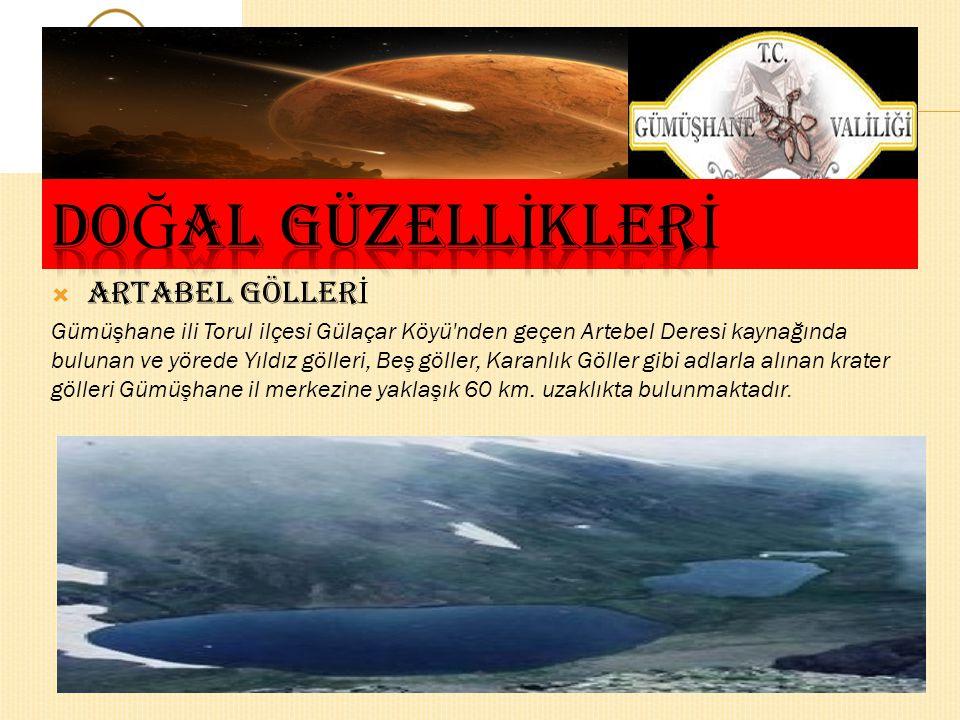  TOMARA Ş ELALES İ Şelale Doğu Karadeniz Bölgesi Gümüşhane İli Şiran İlçesine 25 km mesafede bulunan Seydibaba Köyündedir. Tomara Şelalesi adeta kaya