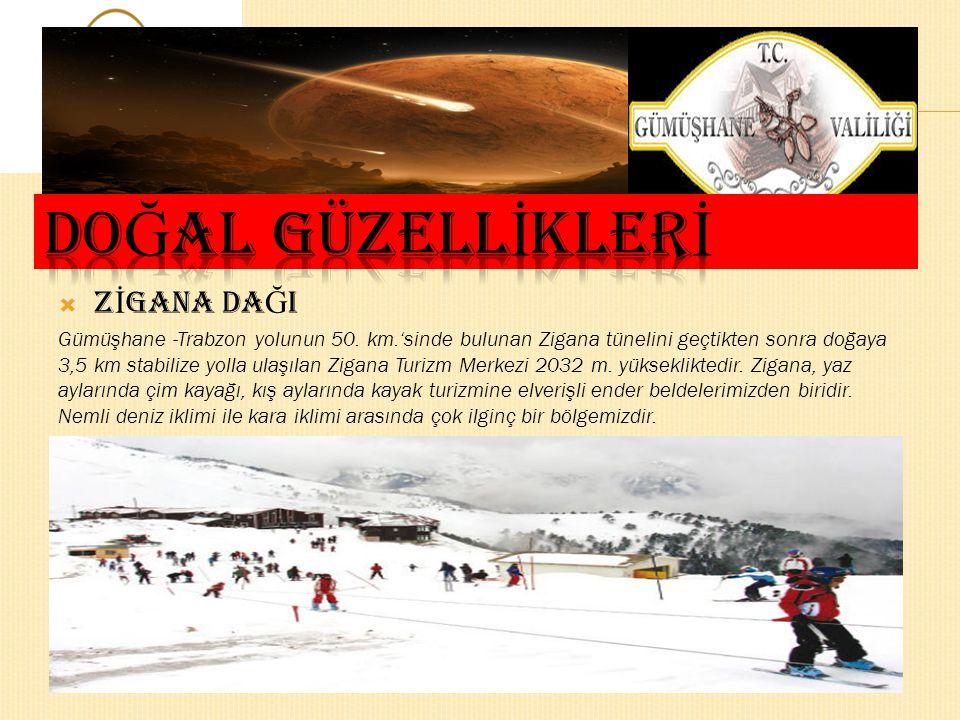  Z İ GANA DA Ğ I Gümüşhane -Trabzon yolunun 50.
