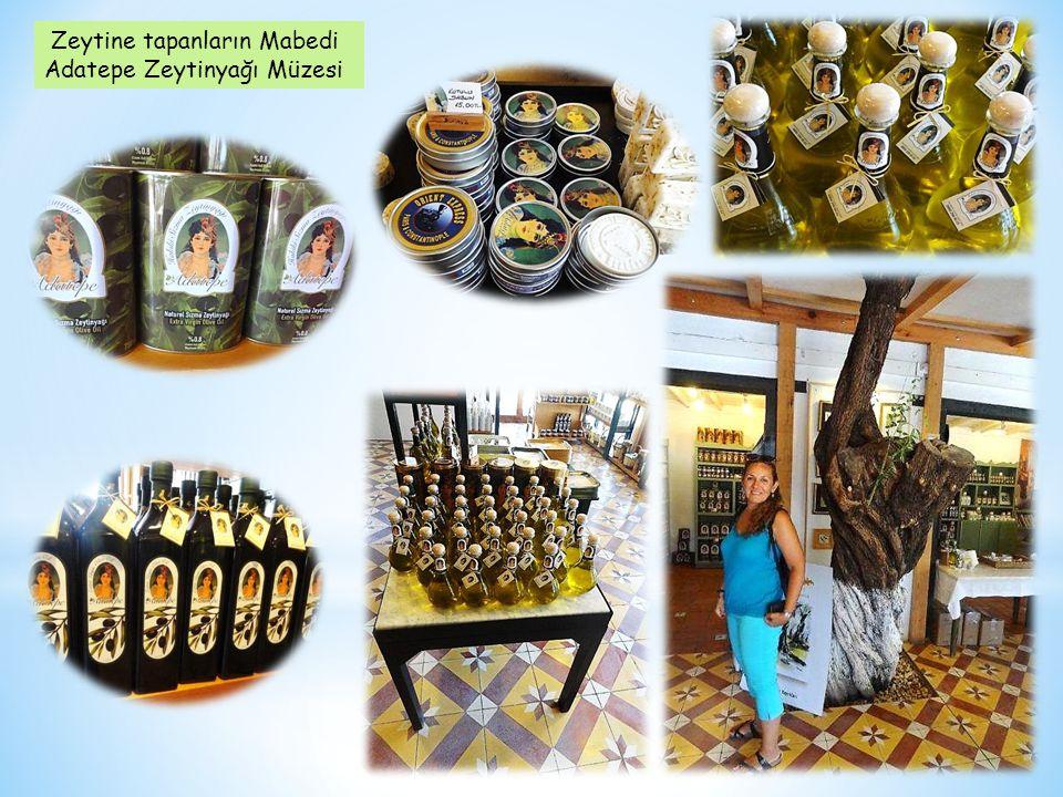 Zeytine tapanların Mabedi Adatepe Zeytinyağı Müzesi