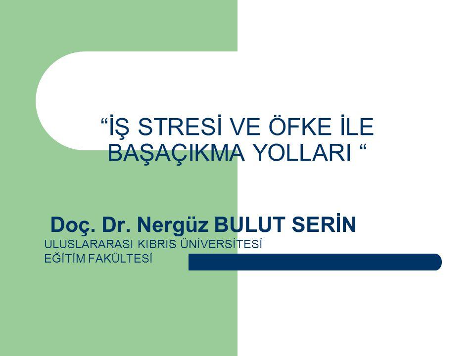 İŞ STRESİ VE ÖFKE İLE BAŞAÇIKMA YOLLARI Doç.Dr.