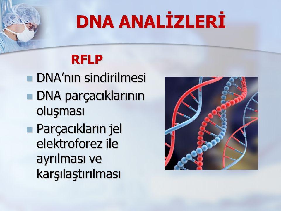 DNA ANALİZLERİ RFLP DNA'nın sindirilmesi DNA'nın sindirilmesi DNA parçacıklarının oluşması DNA parçacıklarının oluşması Parçacıkların jel elektroforez ile ayrılması ve karşılaştırılması Parçacıkların jel elektroforez ile ayrılması ve karşılaştırılması
