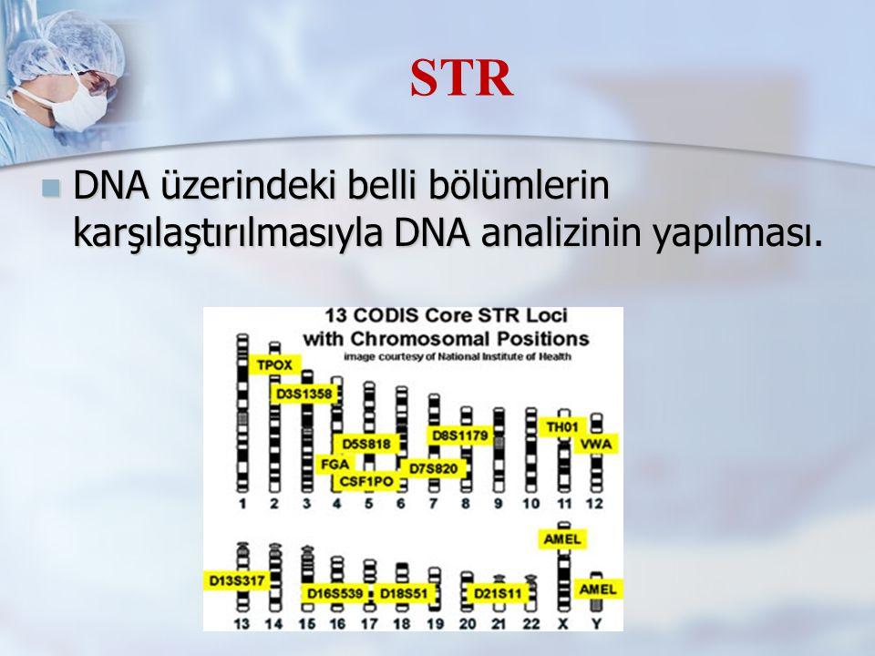 DNA üzerindeki belli bölümlerin karşılaştırılmasıyla DNA analizinin yapılması.