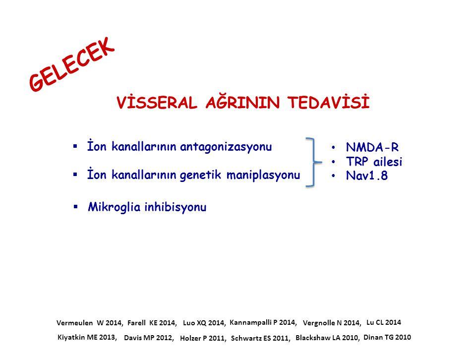GELECEK  Mikroglia inhibisyonu  İon kanallarının antagonizasyonu  İon kanallarının genetik maniplasyonu Farell KE 2014, Kiyatkin ME 2013, Vergnolle
