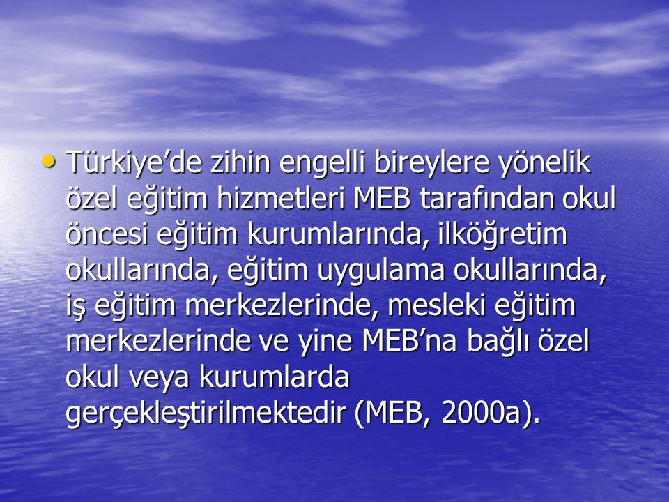 Türkiye'de zihin engelli bireylere yönelik özel eğitim hizmetleri MEB tarafından okul öncesi eğitim kurumlarında, ilköğretim okullarında, eğitim uygul
