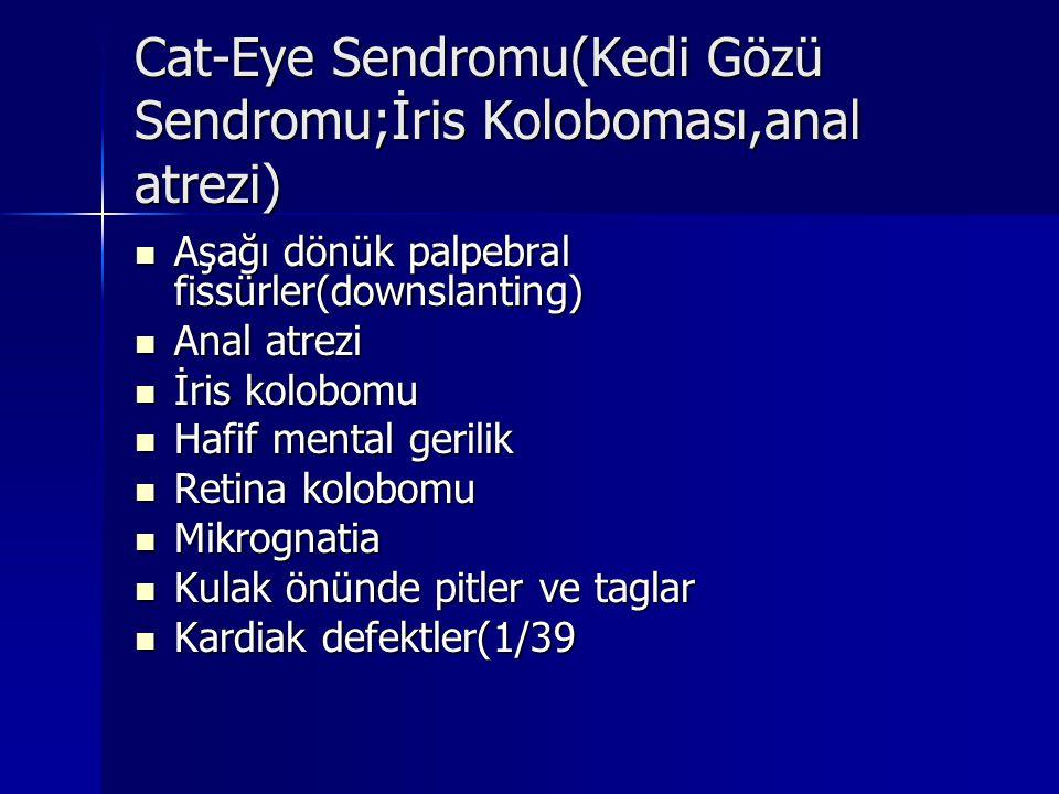 Cat-Eye Sendromu(Kedi Gözü Sendromu;İris Koloboması,anal atrezi) Aşağı dönük palpebral fissürler(downslanting) Aşağı dönük palpebral fissürler(downsla