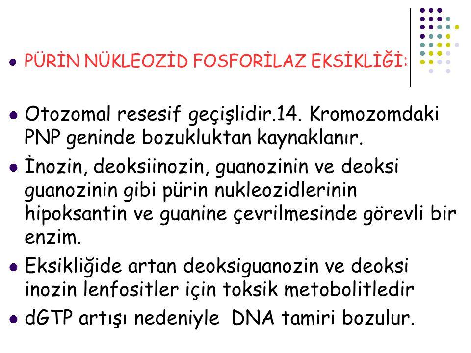 PÜRİN NÜKLEOZİD FOSFORİLAZ EKSİKLİĞİ: Otozomal resesif geçişlidir.14. Kromozomdaki PNP geninde bozukluktan kaynaklanır. İnozin, deoksiinozin, guanozin