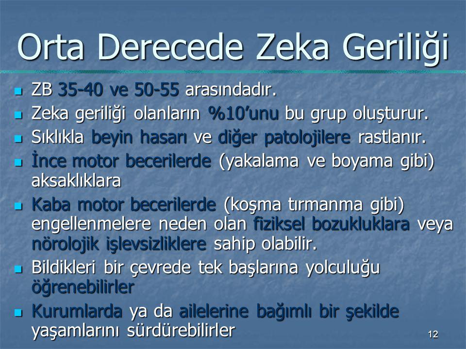 12 Orta Derecede Zeka Geriliği ZB 35-40 ve 50-55 arasındadır.