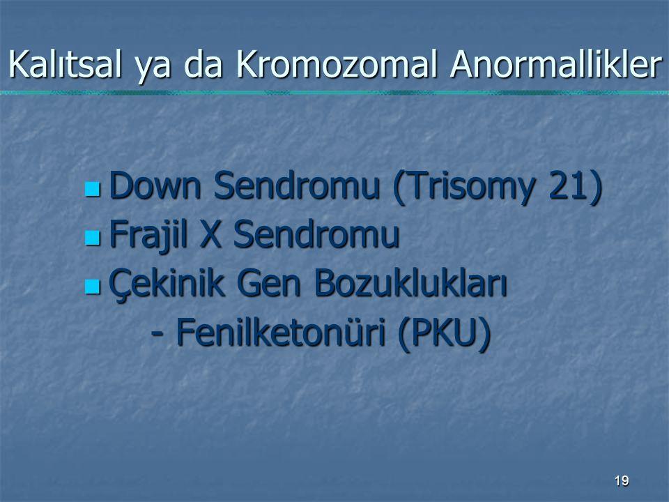 19 Kalıtsal ya da Kromozomal Anormallikler Down Sendromu (Trisomy 21) Down Sendromu (Trisomy 21) Frajil X Sendromu Frajil X Sendromu Çekinik Gen Bozuklukları Çekinik Gen Bozuklukları - Fenilketonüri (PKU)