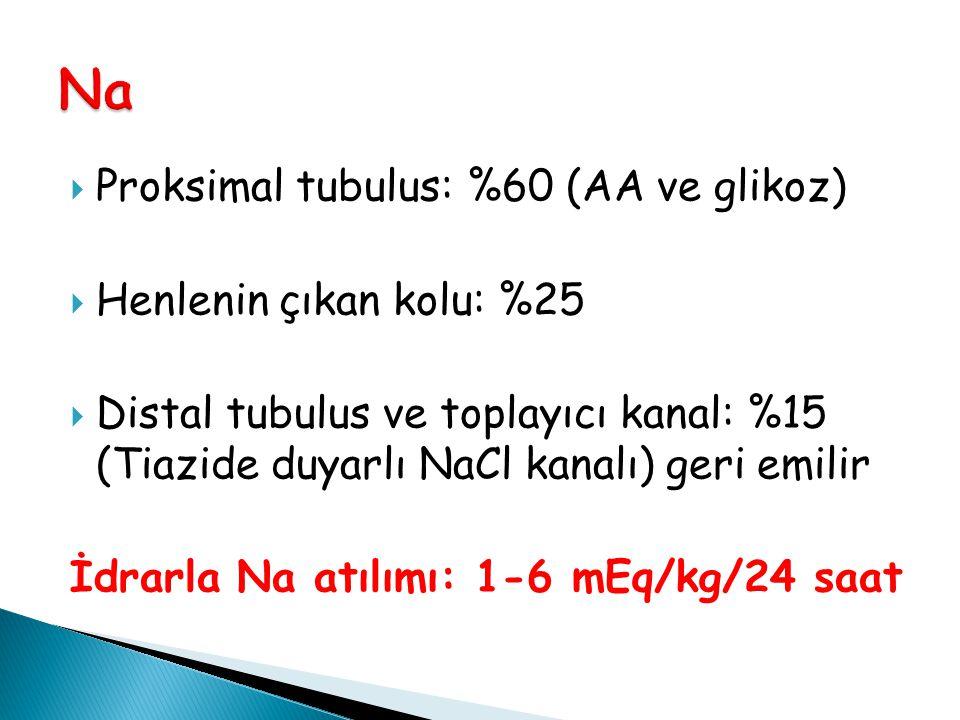  Proksimal tubulus: %60 (AA ve glikoz)  Henlenin çıkan kolu: %25  Distal tubulus ve toplayıcı kanal: %15 (Tiazide duyarlı NaCl kanalı) geri emilir