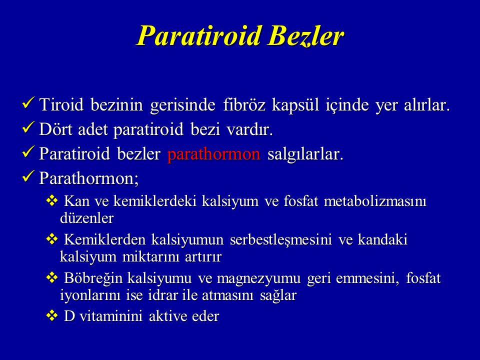 PARATİROİD HORMONLARI