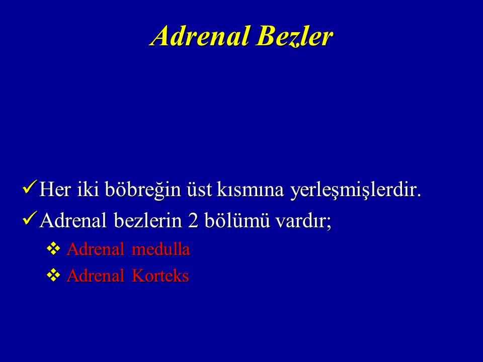 Adrenal Korteks Mineralokortikoidler; Mineralokortikoidler;  Vücudun sodyum-potasyum ve su dengesini düzenlerler.
