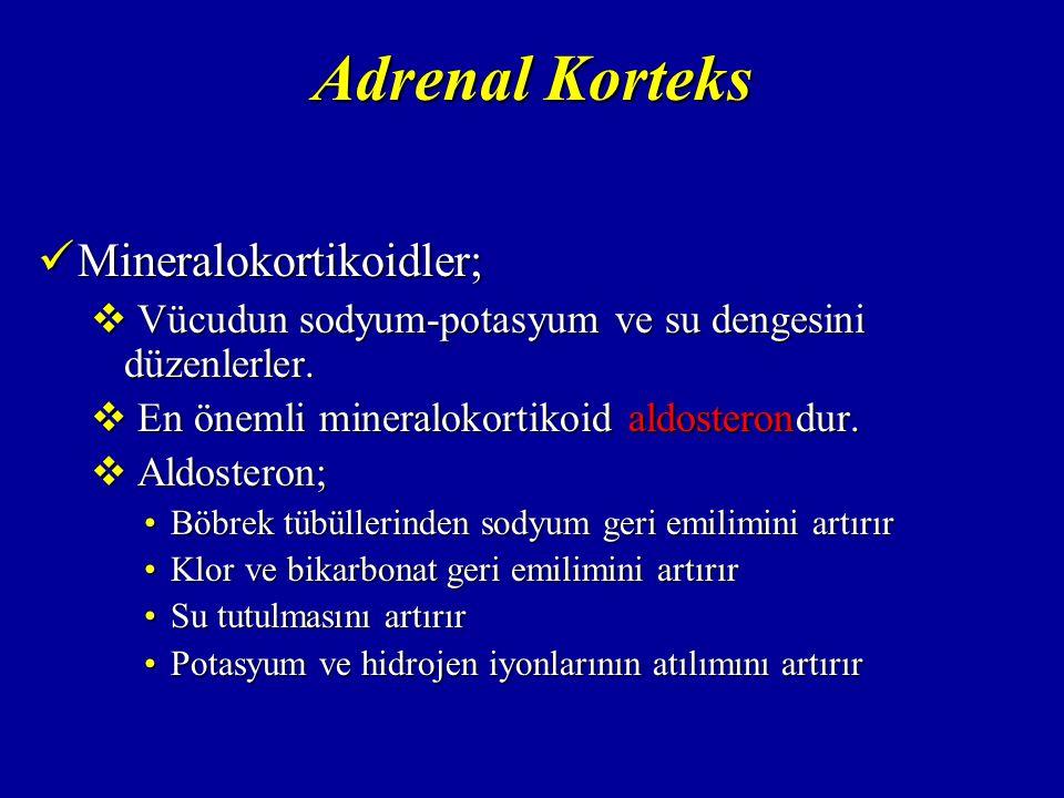 Adrenal Korteks Glukokortikoidler; Glukokortikoidler;  Kortizol  Kortikosteron  Kortizon Karaciğerde yağ ve proteinden karbonhidrat yapımını artırırlar.
