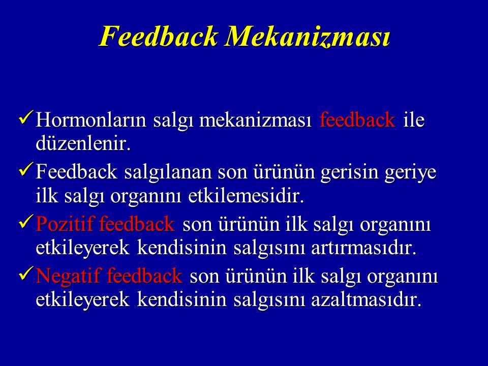 Feedback Mekanizması