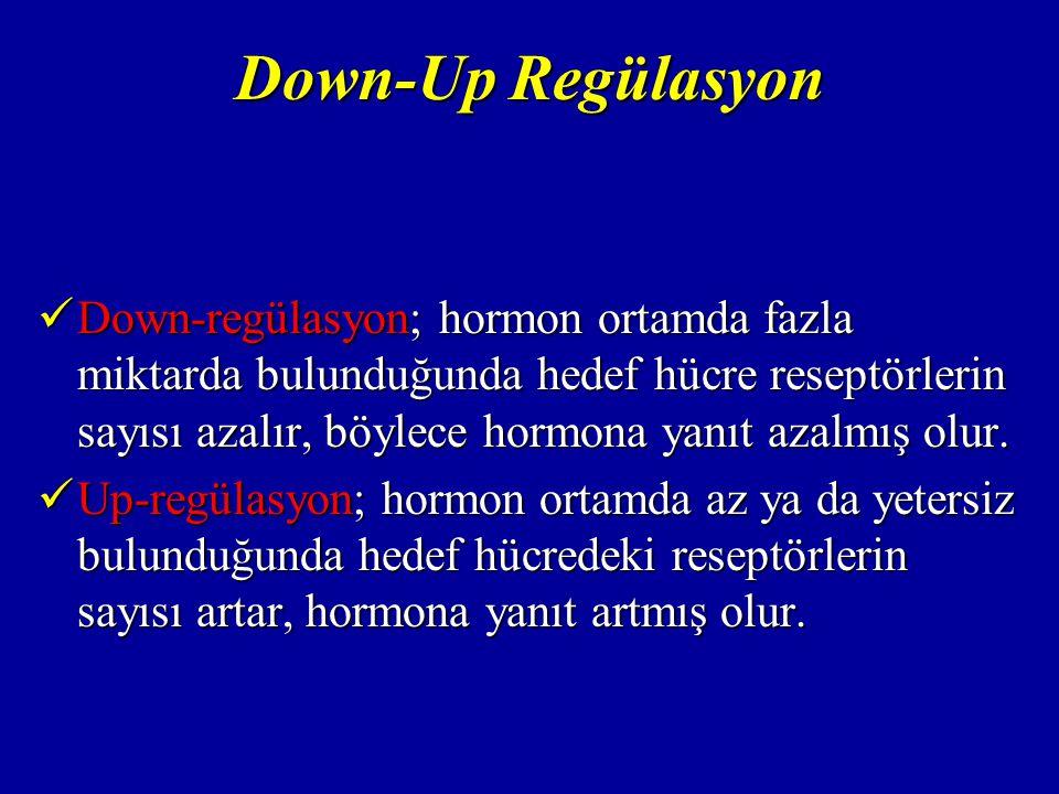 Hipotalamus Beyin tabanında bulunmaktadır.Beyin tabanında bulunmaktadır.