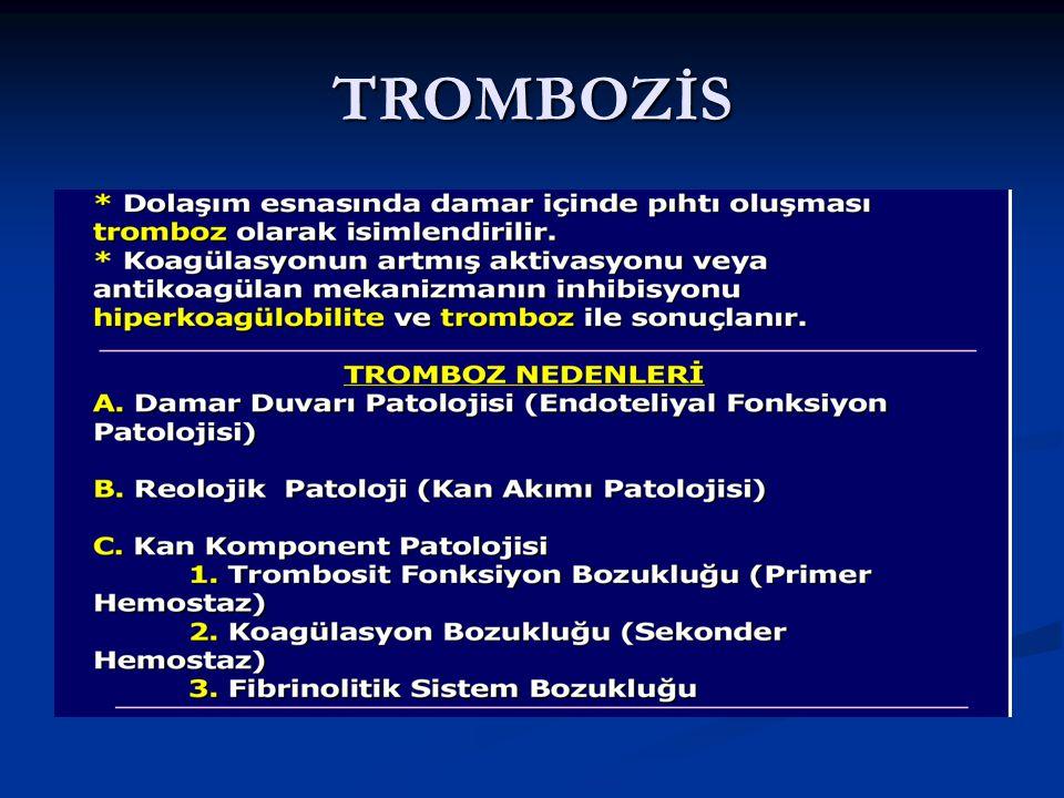 TROMBOZİS