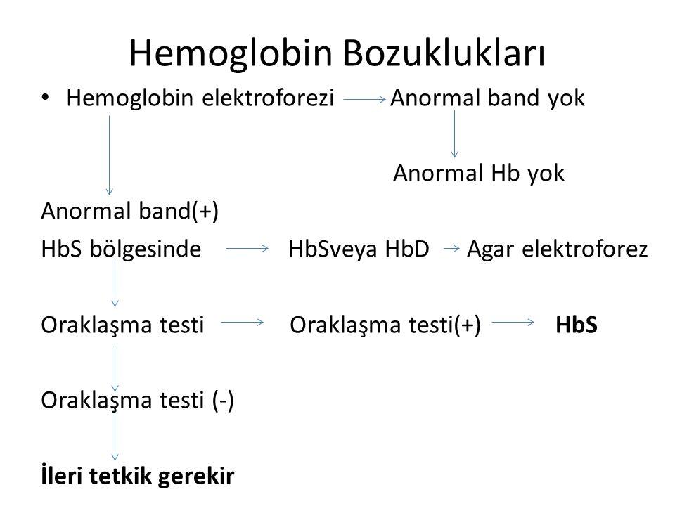 Hemoglobin Bozuklukları Hemoglobin elektroforezi Anormal band yok Anormal Hb yok Anormal band(+) HbS bölgesinde HbSveya HbD Agar elektroforez Oraklaşm