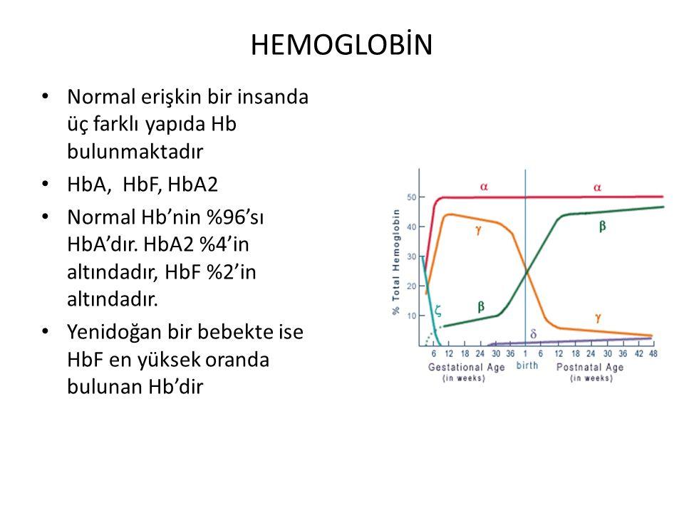HEMOGLOBİN Normal erişkin bir insanda üç farklı yapıda Hb bulunmaktadır HbA, HbF, HbA2 Normal Hb'nin %96'sı HbA'dır. HbA2 %4'in altındadır, HbF %2'in