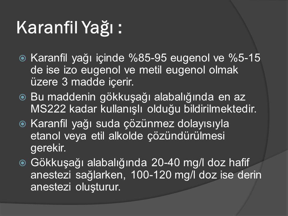 Karanfil Yağı :  Karanfil yağı içinde %85-95 eugenol ve %5-15 de ise izo eugenol ve metil eugenol olmak üzere 3 madde içerir.  Bu maddenin gökkuşağı
