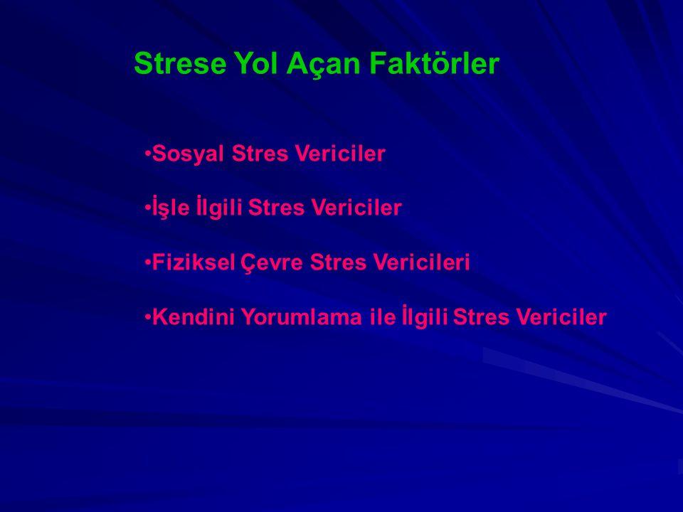 Strese Yol Açan Faktörler Sosyal Stres Vericiler İşle İlgili Stres Vericiler Fiziksel Çevre Stres Vericileri Kendini Yorumlama ile İlgili Stres Verici