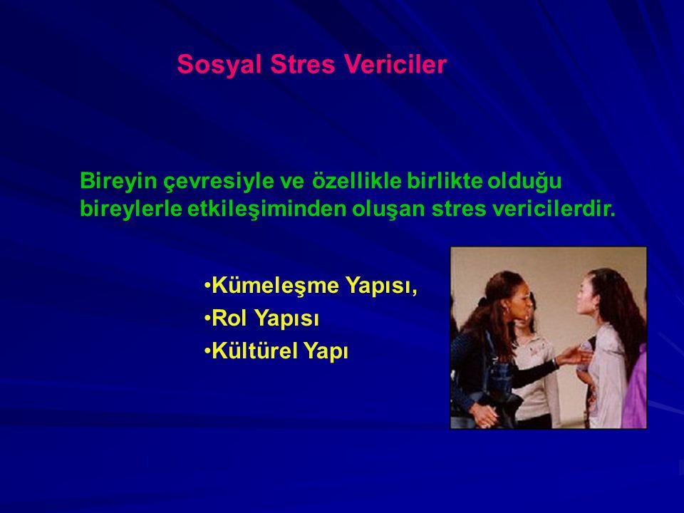 Sosyal Stres Vericiler Bireyin çevresiyle ve özellikle birlikte olduğu bireylerle etkileşiminden oluşan stres vericilerdir. Kümeleşme Yapısı, Rol Yapı