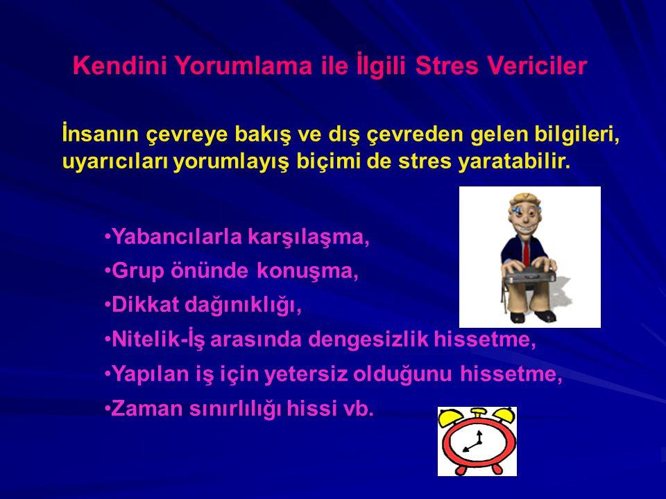 Kendini Yorumlama ile İlgili Stres Vericiler İnsanın çevreye bakış ve dış çevreden gelen bilgileri, uyarıcıları yorumlayış biçimi de stres yaratabilir