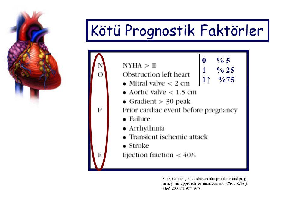 Kötü Prognostik Faktörler 0 % 5 1 % 25 1↑ %75