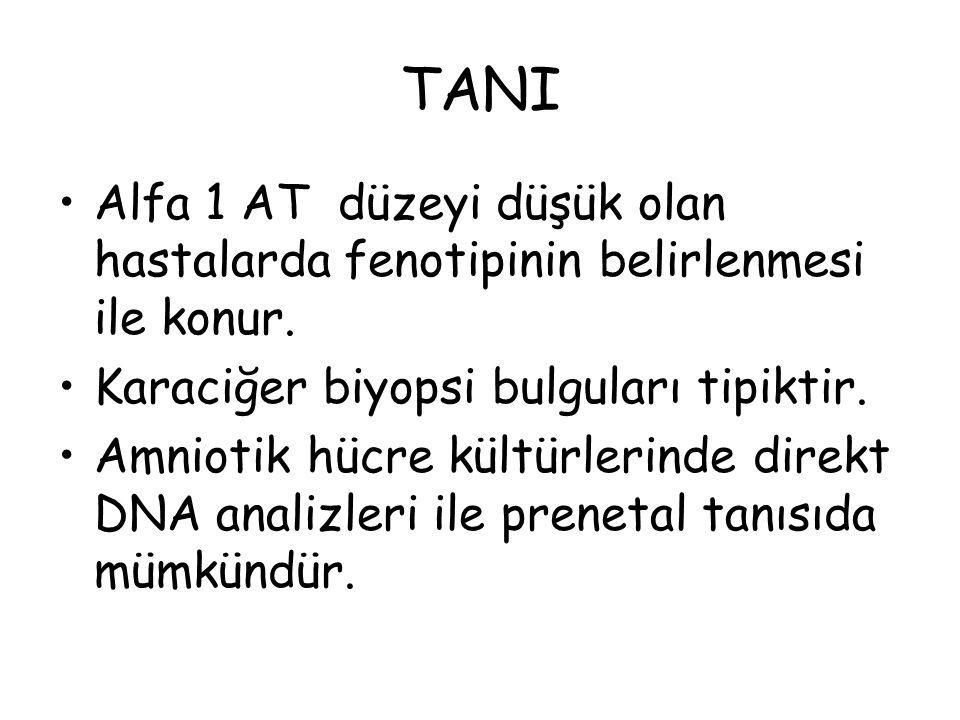 TANI Alfa 1 AT düzeyi düşük olan hastalarda fenotipinin belirlenmesi ile konur. Karaciğer biyopsi bulguları tipiktir. Amniotik hücre kültürlerinde dir