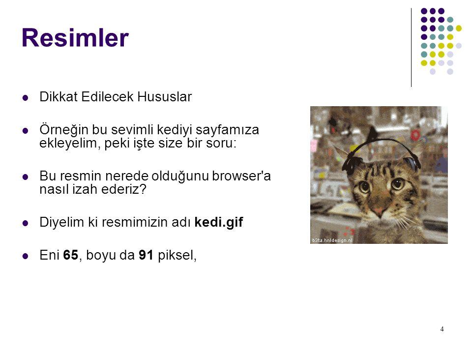 4 Resimler Dikkat Edilecek Hususlar Örneğin bu sevimli kediyi sayfamıza ekleyelim, peki işte size bir soru: Bu resmin nerede olduğunu browser'a nasıl
