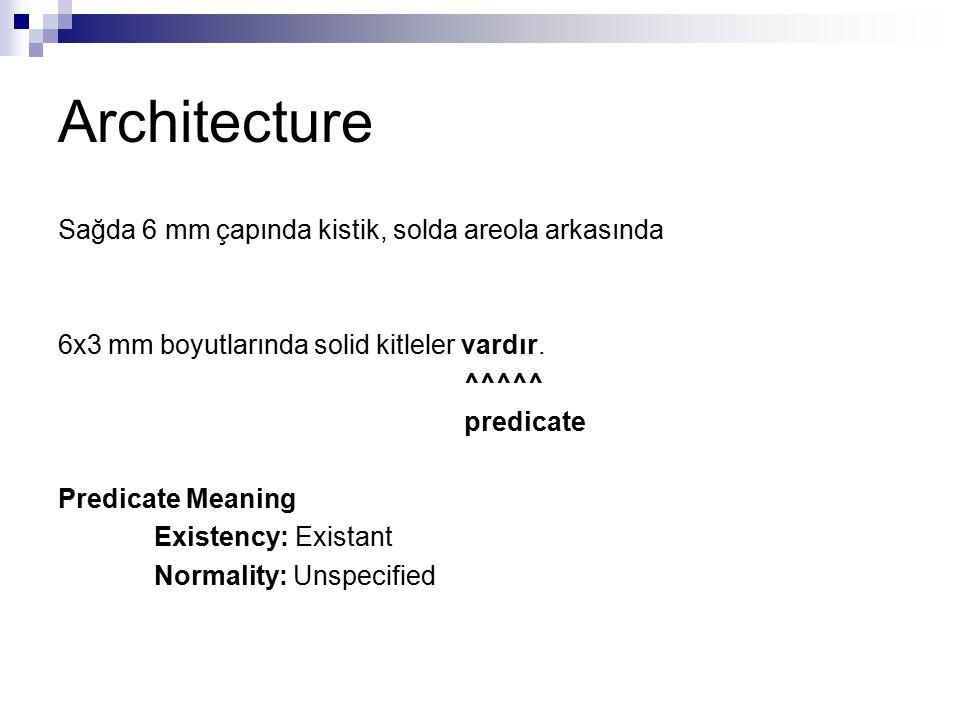 Architecture Sağda 6 mm çapında kistik, solda areola arkasında 6x3 mm boyutlarında solid kitleler vardır. ^^^^^ predicate Predicate Meaning Existency: