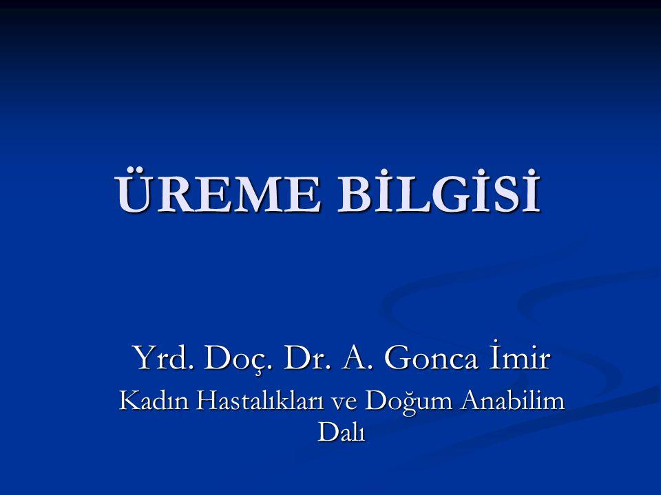 ÜREME BİLGİSİ Yrd. Doç. Dr. A. Gonca İmir Kadın Hastalıkları ve Doğum Anabilim Dalı