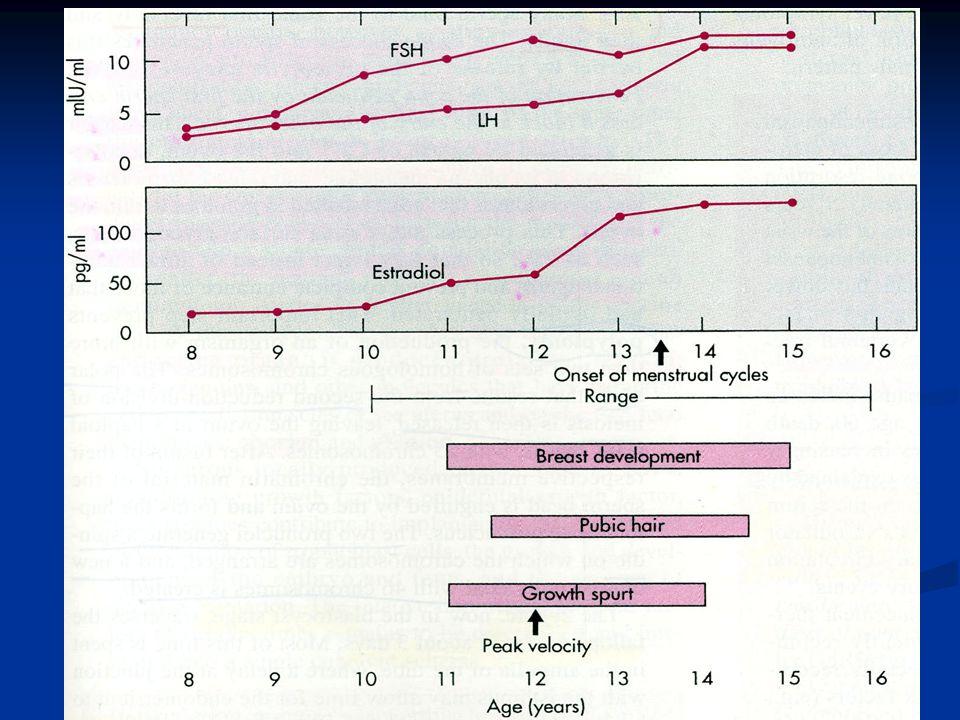 Female Puberty Üreme hormonları