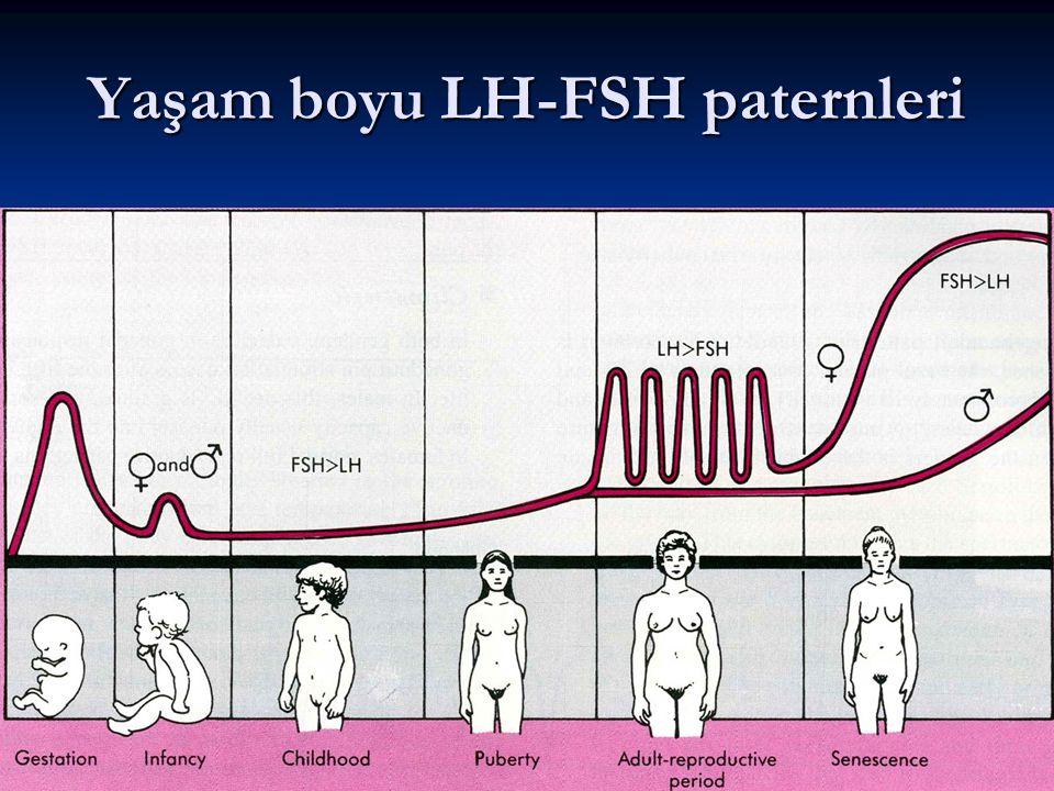 Yaşam boyu LH-FSH paternleri